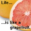 grapefruit4life