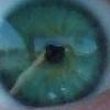 lisavee userpic