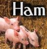 Food: ham