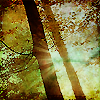 chisopani userpic