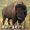 Food: bison burgers