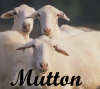 Food: mutton