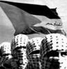 ali_al_malica userpic