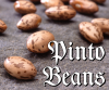 Food: pinto beans