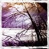 illicit_dreams userpic