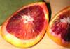 flood_orange userpic