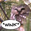 *wink*