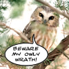Teh Owly Wrath!1!