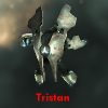 sleet01: Gallente Frigate Tristan