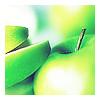 piece_of_sun userpic
