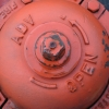 sanguine-hydrant