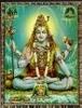 siddha userpic