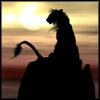 wolfegod userpic