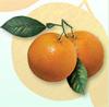 citrus_amara userpic