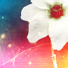 daethule userpic