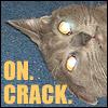 Aifacat: Remy. On. Crack.