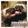 wolviesgal userpic