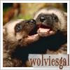 wolviesgal userpic