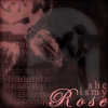 kylee: the time i have wasted on my rose ...