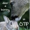 Nicole: deer + bunny