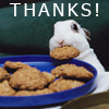 The Elevator Whisperer: Bunny thanks!
