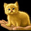 vaxcat userpic