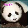 panda, emo panda