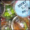 somedreams_fade userpic