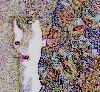 yew_tree userpic