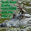 outsideth3box: Baby croc Hey You