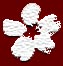 flowerofedo userpic