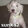 sunka2 userpic