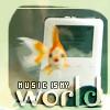 worldreader userpic