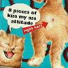 72slikchik userpic