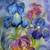 the_purple_iris userpic