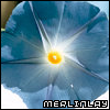 merlinlay userpic