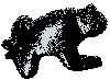 grenouillenoire userpic
