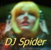 DJ Yellow