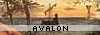 avalon_calling userpic