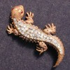 lizardc