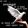 Mark: wings of dove