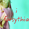i_forsythia userpic