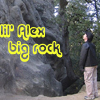 lil alex big rock