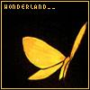 **Koudelka - Butterfly