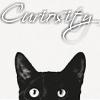 catcuriosity