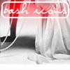 bashicons userpic