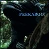Elv: PEEKABOO