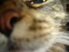 lov3_ userpic