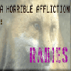 fox affliction rabies