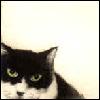 Martha: cat2-cc barton